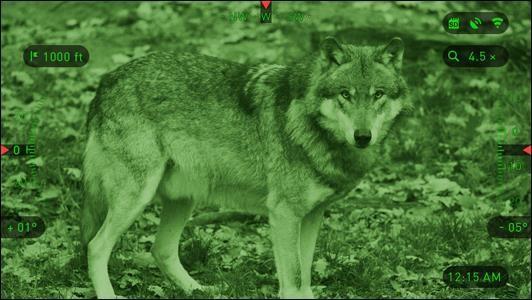 u=1523374824,515014013&fm=199&app=68&f=JPEG?w=532&h=300&s=E8A8F65846B3CA710A35C60F030020D6 - ROLES洛莱斯NVS-520双目双筒数码夜视仪 摄录夜视仪 侦查夜视仪